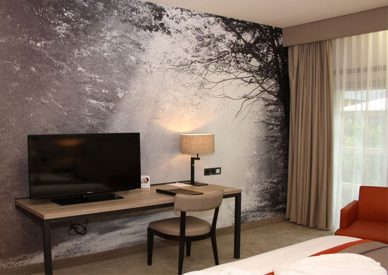 luxe kamer tv wand tjaarda tjaarda oranjewoud. Black Bedroom Furniture Sets. Home Design Ideas